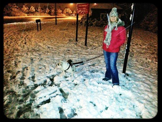 Snow My Dog English Bulldog