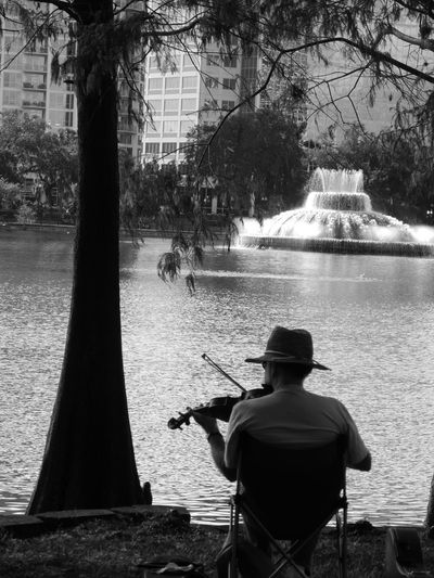 For the love of Music Birds Branch City Day Downtown Flowers Lake Lake Eola Leisure Activity Leondias, Lifestyles Music, Nature Nature O Outdoors Sky Tree Water Water Reflections