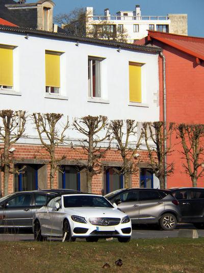 Sunny calander, beautiful colored frontage for a special .. car Classe C Cabriolet Mercedes Cabrio Mercedes Stationary Frontage Colored Architecture Building Building Exterior Building Story Car Porn Coupe Classe C Luxury Luxury Car Mercedes Benz Motor Vehicle Perfect Alignment Trees Stationary Sunny Car Photography White Mercedes White Car Windows Yellow Shulters Fauna Day France Photography In France metropolitaine