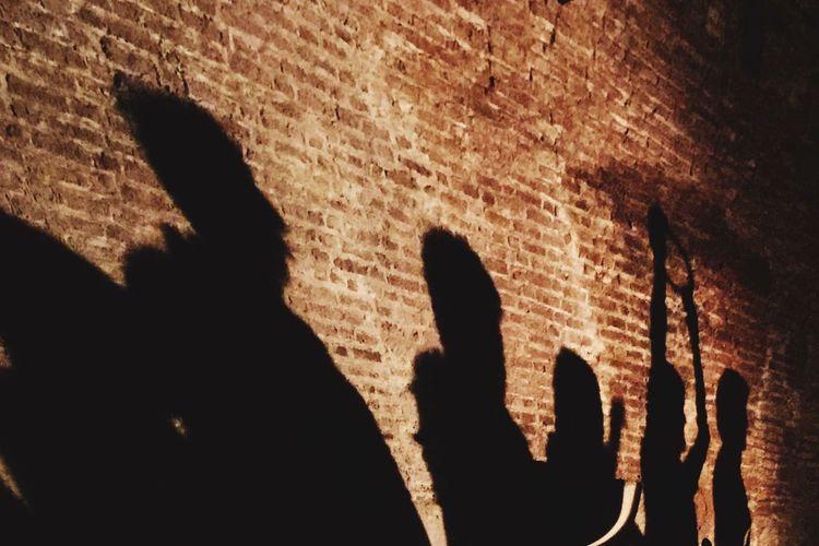 Art Photography Rituals Magical Dungeon Shade Shadows Shadow Spooky Human Body Part Halloween Human Hand People