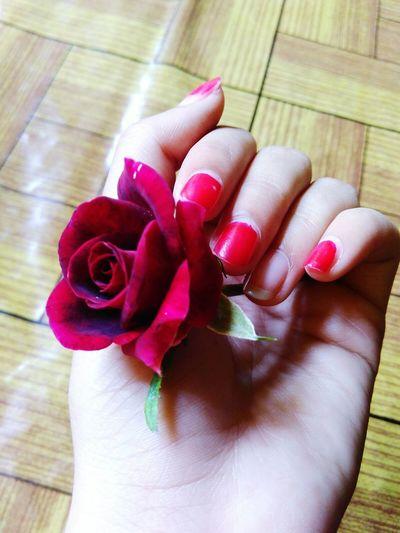 This is rose!! Enjoying Life Taking Photos Kamerahpgue Redmi2