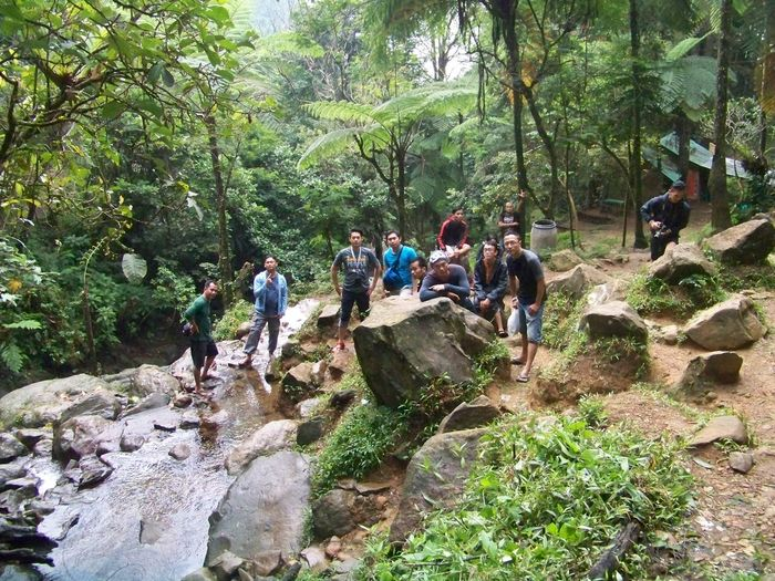Adventure Cisarua Curug Cilember Forest Green Leisure Activity Outdoors Vacations
