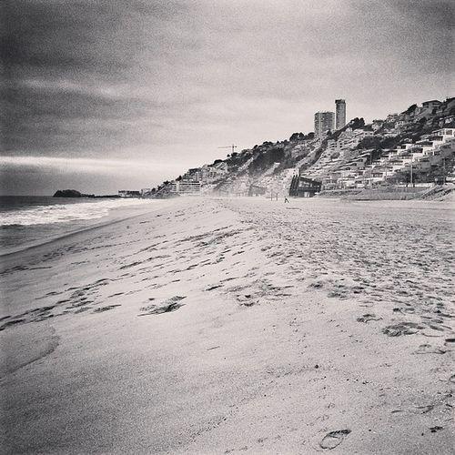 Reñaca Playa Chile