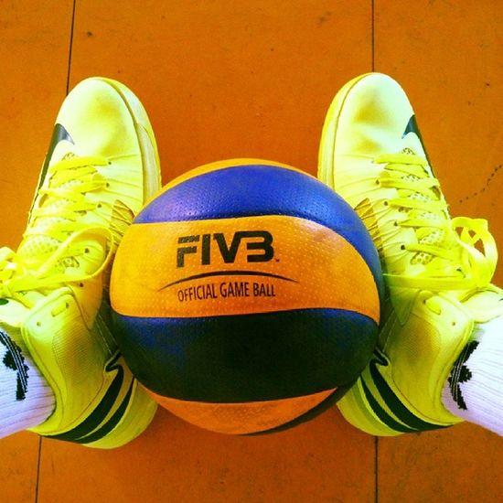 Voleibol Volei Volleyball Minha Paixão