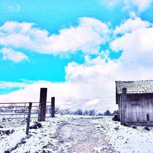 Hanging Out Taking Photos Enjoying Life Nature_collection EyeEm Nature Lover Snow Clouds And Sky Winter Nature Switzerland