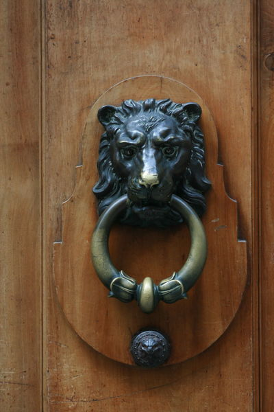 Ornament Anneau Porte Ornement Ornaments Iron Metal Design Bois Wood Architecture Geneve Geneva GrandMezel Ouverture Entry Entryway Lion - Feline Wood - Material Door Door Knocker Ornate Doorknob Close-up Door Handle Decorative Art Entryway Closed Door Lion Front Door Sculpture