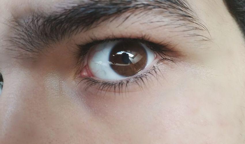 Instagram : @mohrdcpic_ and @_Honeeymooon Tumblr First Eyeem Photo Gay Tumblrboy Teen Hot Eyes Eyesbrown