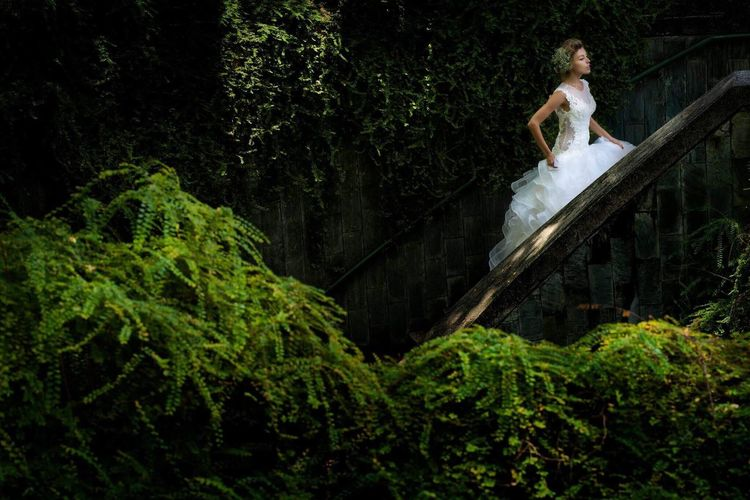 StairwayBride Hasselblad XCD90mm NoFlash Model: Tanya Photo: Me Edit: GaryChong Dress Adult Only Women One Woman Only Tree Adults Only One Person One Young Woman Only Outdoors People Young Adult Beautiful People Beauty Beautiful Woman Wedding Dress Females Full Length Women Young Women Nature Lost In The Landscape
