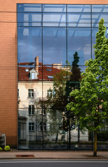 Buildings and trees seen through glass window