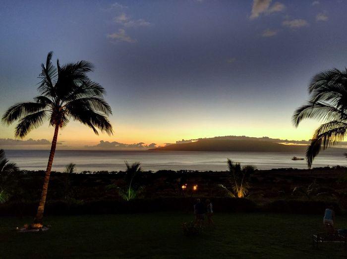 Feel the Maui Breeze First Eyeem Photo