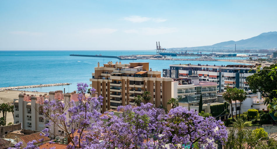 Spring view of the Malaga city Spring View Of The Malaga City Malaga SPAIN España Water Sea Sky Architecture Built Structure Nature Building Exterior Flowering Plant Plant Day Flower City Beauty In Nature Horizon Over Water Horizon Transportation No People Land Mode Of Transportation Outdoors Purple