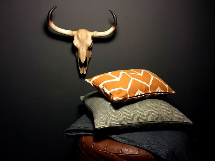 Pillows Stacked By Animal Skull Against Wall
