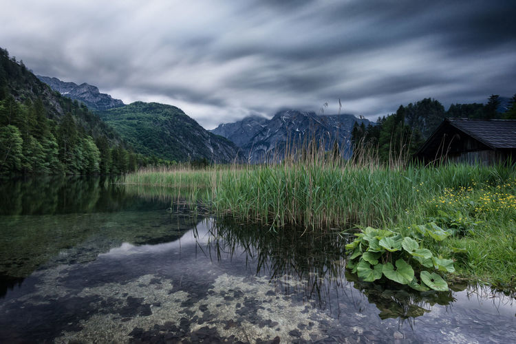 Almsee am Abend Almsee Water Sky Plant Mountain Nature Tranquility Beauty In Nature Scenics - Nature Lake Mountain Range Outdoors Landscape Green Moody Sky Dust Pittoresk Austria Reed Schilf First Eyeem Photo