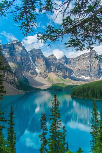 Nature's painting for us. Mountain Mountain Range Scenics Lake Reflection Water Beauty In Nature Tranquil Scene Nature Pinaceae Tree Pine Tree Landscape Tranquility Travel Destinations Forest Wilderness Mountain Peak Blue Idyllic Moraine Lake  Banff National Park  Alberta Canada Glacier The Great Outdoors - 2017 EyeEm Awards
