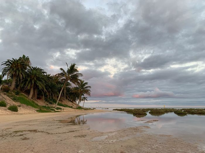 Sky Cloud - Sky Water Beauty In Nature Tree Land Tranquility Sand No People Non-urban Scene Scenics - Nature Plant Tranquil Scene Beach Palm Tree Sea Nature Idyllic