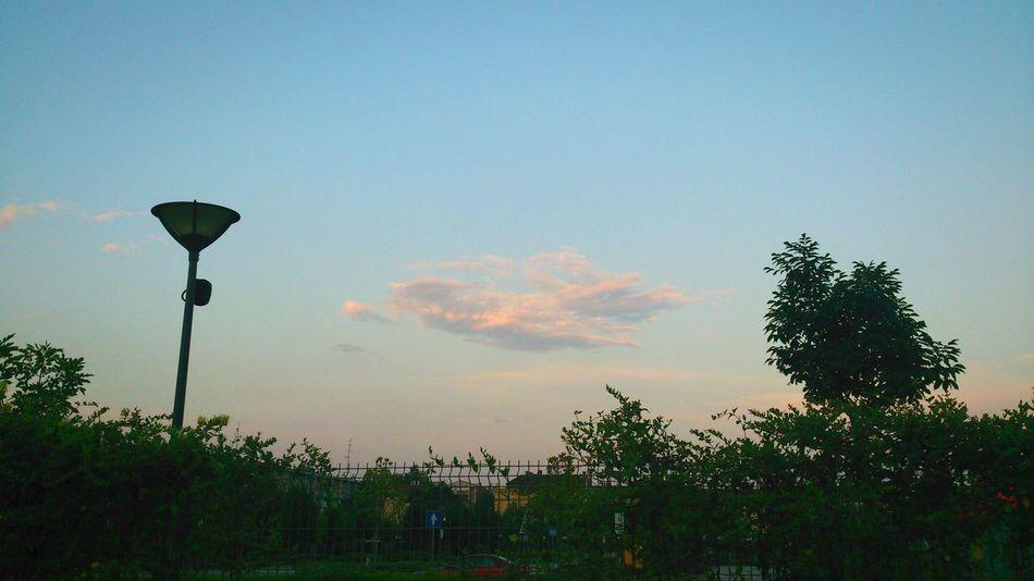 Cloud in the Sky . Cloudscape Clouds And Sky Clouds Cloud - Sky Cloudporn Cloud And Sky Cloud Porn Clouds & Sky Sunset Dreamy Szegedi Szegedcity Szegedforever♥ Szeged Hungary Hungarian_photographers