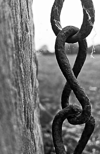 Iron Chain Wooden Post Old Chain Old Wooden Fence Old Edited My Way Black And White Collection  Nature Gallery EyeEm Nature Lover EyeEm Gallery EyeEm Masterclass Natur Doğa Eyeem Turkey Nature EyeEm Nature Photography Naturelovers Black And White Edited Nature Edited Photos Nature_collection Wooden Chains Old Buildings