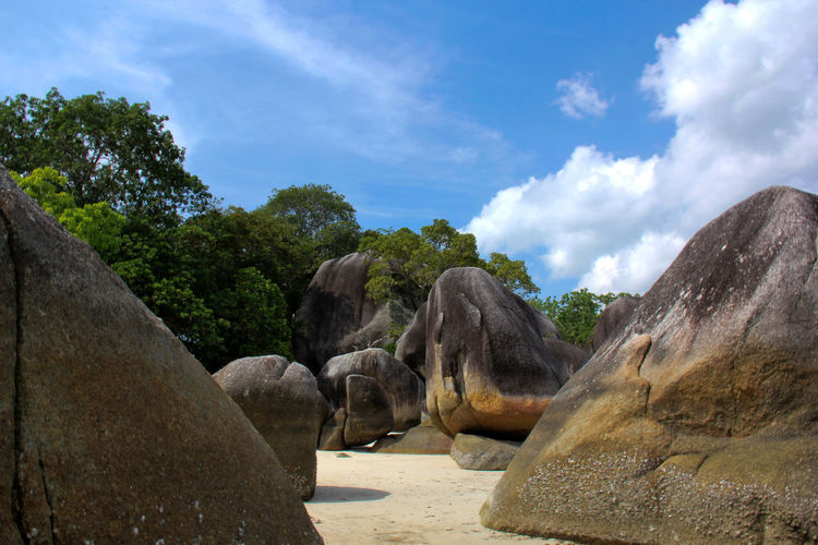 Granite rock on the belitung island is one of the unique landmark. Belitung Island Belitung, Indonesia INDONESIA Animal Animal Themes Beauty In Nature Cloud - Sky Day Granite Growth Land Nature No People Outdoors Plant Rock Rock - Object Rock Formation Scenics - Nature Sky Solid Sunlight Tranquility Tree Tropical