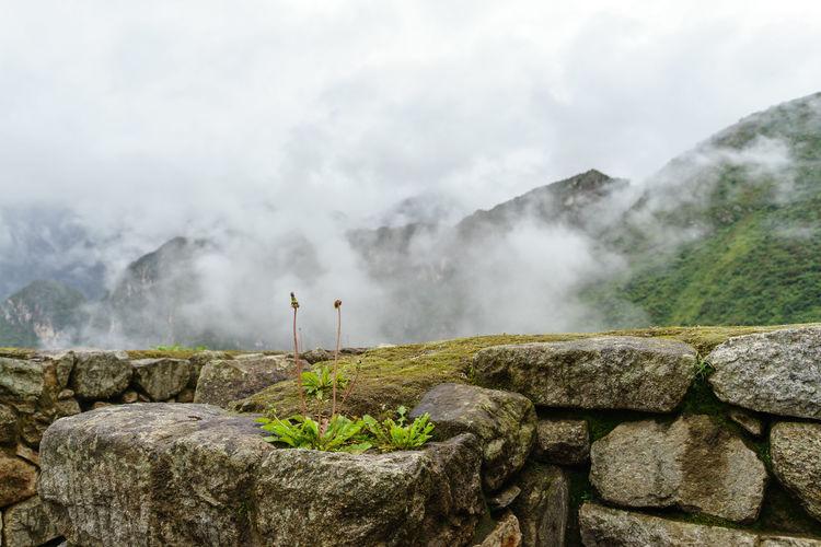 America Ancient Anden Bucket List Cloud Fog Inca International Landmark Landscape Machu Picchu Mist Mountain Old Peru Rain Ruins Season  Sky South Travel Traveling Wall Landscapes With WhiteWall Urban Spring Fever The KIOMI Collection