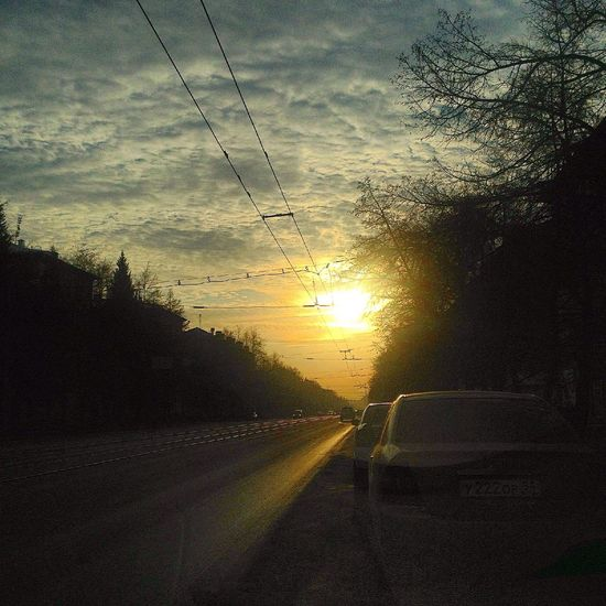 Дорога к солнцу Nature Novosibirsk