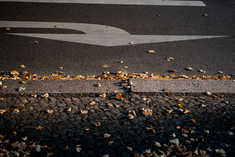 turn right to the light ! Asphalt Autumn Autumn Colors Autumn Leaves Berlin Street Photography Kudamm Nikon Open Edit Traffic Urban Moods Berliner Ansichten Darkness And Light Daylight Into The Light Light And Shadow Moody Outdoors Point Of View Road Marking Road Sign Season Change Street Streetphoto_color Traffic Sign Urban Autumn