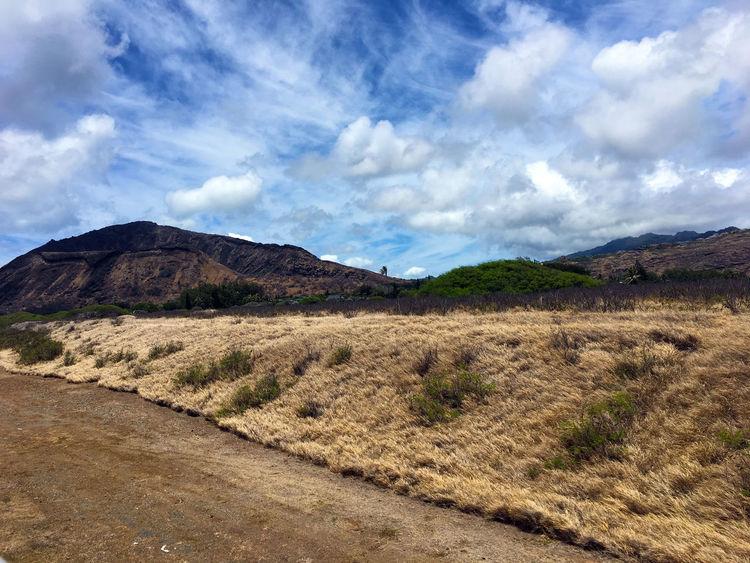 Scenery of Nature and Landscapes in Oahu Hawaii including Diamond Head Crater, Hanauma Bay, Pearl Harbor, Waimea, misc North Shore locations and Honolulu Blue Ocean Coastline Hawaii Oahu, Hawaii Ocean View Clouds And Sky Landscape Nature Ocean Outdoors