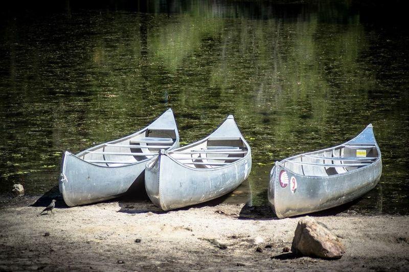 Southern California California Canoeing canoes Lakeshore Water Sport