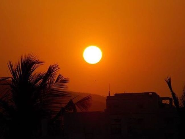 Sunset Silhouette Scenics Beauty In Nature MyPhotography NickonClicks