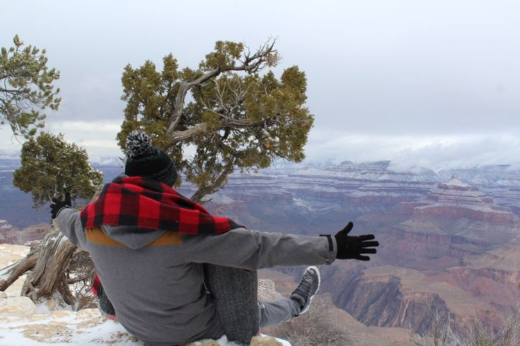 Rear view of man looking at mountain during winter