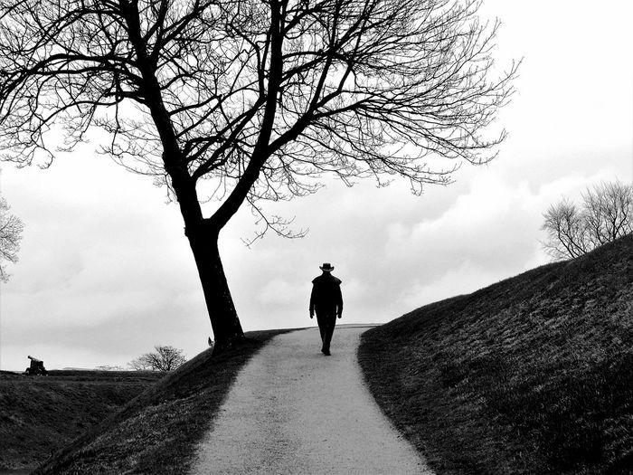 Rear view of man walking by bare trees against sky