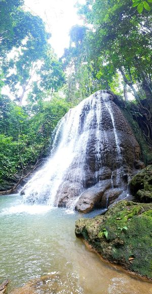 EyeEmNewHere Water Nature No People Outdoors Beauty In Nature Scenics Waterfall Nature Scene Beautiful Nature Falling Water Flowing Water Moving Water Natural Wonders Water On Rocks Tropical Climate Tropical Scenery Jungle Water Pool Natural Water Natural Waterfall Waterfall Background