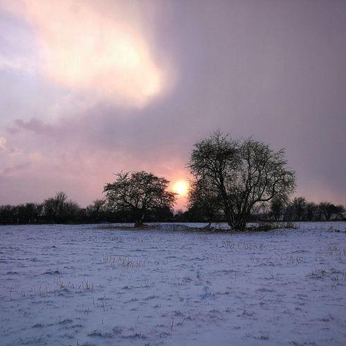 Snowday Sunset