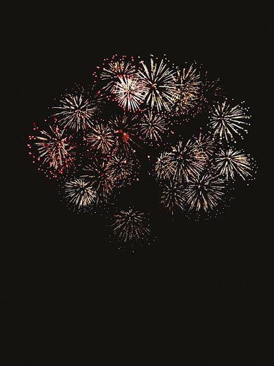 Firework Display Night Dark Sky Fireworks Fireworksphotography Firework Fireworks In The Sky Fireworks! Fireworks Festival Hanabi Japanesefirework JapaneseFestival Beautiful Scenery 花火大会 玉川花火大会