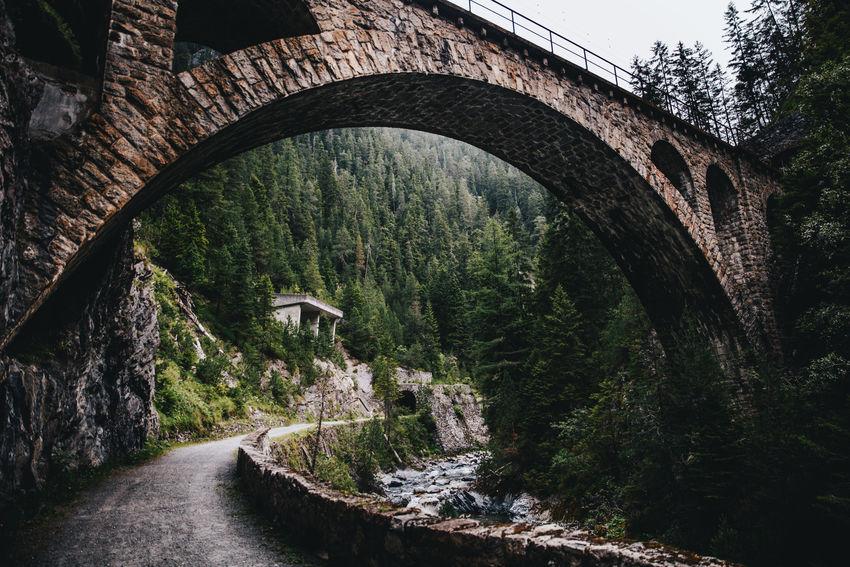 Green Nature Path Trees Bridge Firs Forest Hikingadventures Switzerland Trainbridge Traintracks Woods