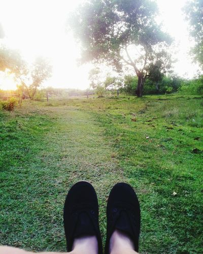 Hi! Relaxing Taking Photos Hanging Out Tree Grass Ilovenature✌🌈 First Eyeem Photo inPanggasinan, Philippines.