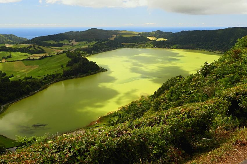 Lagoa Das Furnas Furnas Sao Miguel Azores Green Lake Green Lake Green Landscape Landscape View Nature Been There. Done That. Lost In The Landscape EyeEmNewHere First Eyeem Photo Perspectives On Nature