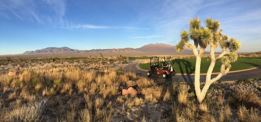 Joshua Tree Golf Golf Cart Las Vegas Desert Golf Course Panorama IPhone 5S