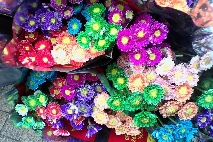 Flowerporn Flower Collection Taking Photos