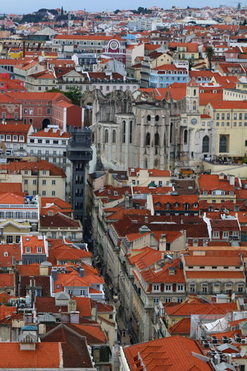 Roofs of Lisbon The Art Of Street Photography My Best Photo My Best Photo 3XPUnity Taking Photos Architecture And Art Architectural Detail Façade Roofs Of Lisbon Roofs From Above Urban Exploration Urban Photography Urban Scene Cityscape City Full Frame Backgrounds Red Architecture Building Exterior Built Structure TOWNSCAPE Human Settlement Old Town Tiled Roof  Bell Tower Crowded Residential District Town Rooftop