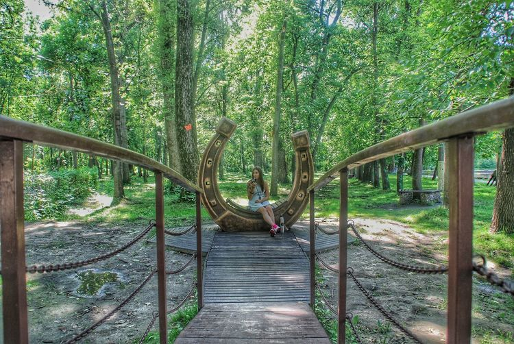 Tree Nature The Way Forward Green Color Outdoors Beauty In Nature Day Forest Growth No People Footbridge Россия НижнийНовгород парк Lost In The Landscape EyeEmNewHere