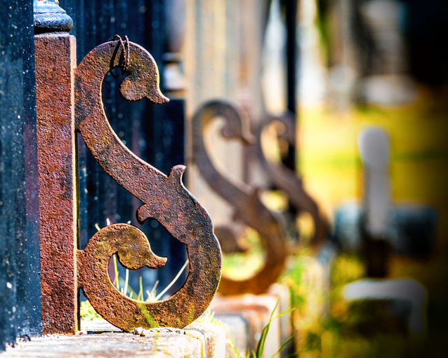 Designs in Iron Check This Out Taking Photos Enjoying Life Relaxing Fence Fence Art Fences & Beyond Fence Photography Artistic Artistic Photography Nikon Nikonphotography EyeEm Best Shots Eyeemphotography Cemetery Cemetery_shots Simple Photography Simple Beauty Raleigh