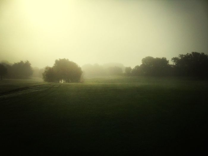 Foggy Morning Golfing Things That Are Green English weather! Weather Pro: Your Perfect Weather Shot