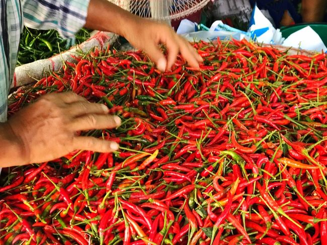 Human Body Part Human Hand Food Chili Pepper Red Chili Pepper Food And Drink Freshness Close-up Market Thailand Thai Chili Outdoors Lifestyles Food Stories An Eye For Travel