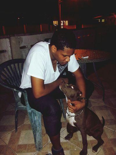 Best friend Dog Love