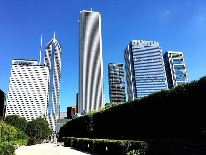 Chicago from the garden.