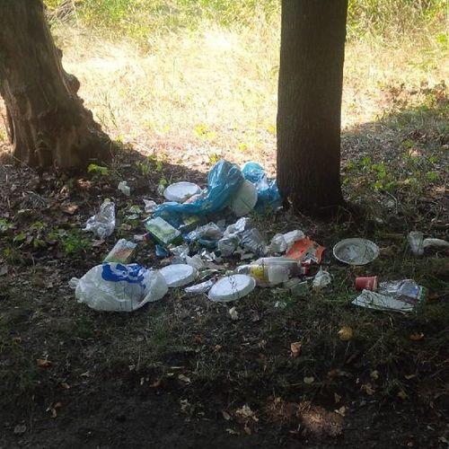 А эти человеки видать пытались собрать свой мусор в одну кучку, но все ровно оставили его в парке . :( Харьков , мусор, парк, ПаркиМусор, МусорПарк.