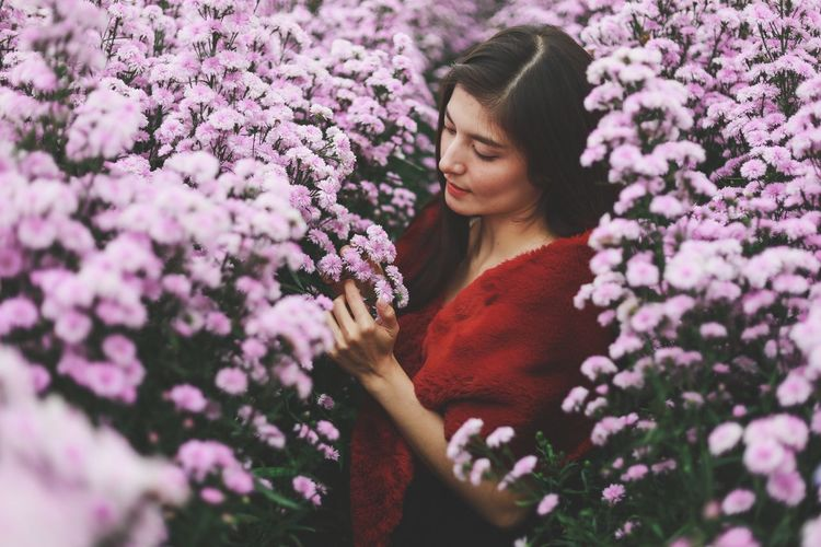 Low angle view of woman on pink flowering plants