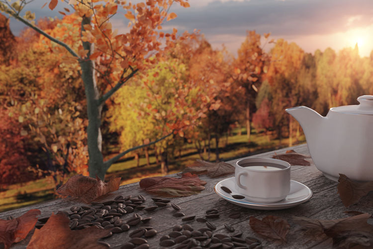 Coffee cup on table against trees during autumn