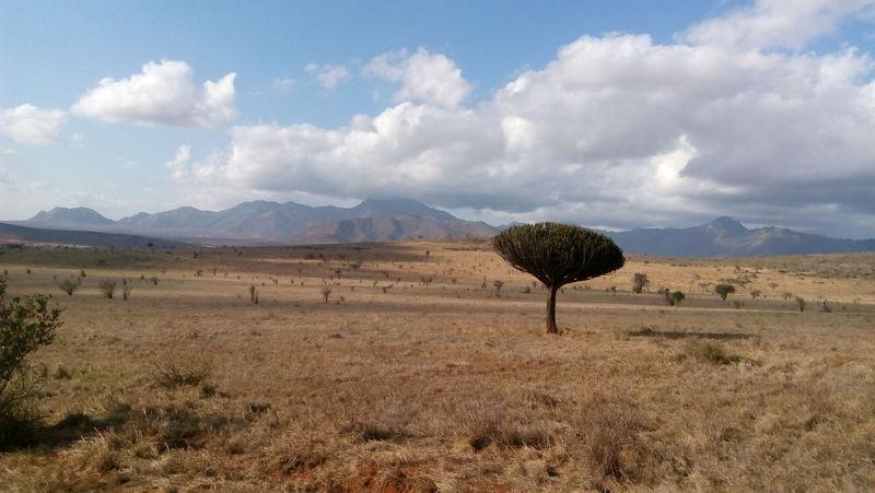 LovelyKenya Phonetography No People Beauty In Nature Landscape