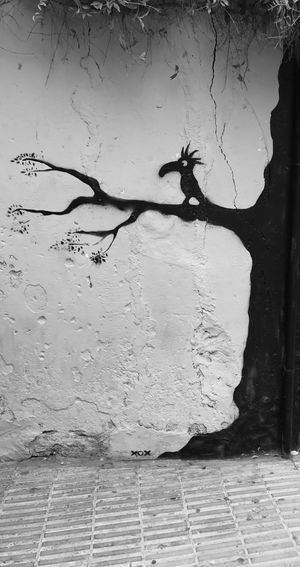 Day Built Structure No People Outdoors Architecture Close-up Graffiti Street Photography Bird Tree Drawing